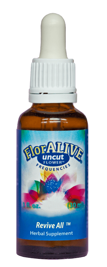 Use ReviveAll Uncut Flower Essence to help with PTSD