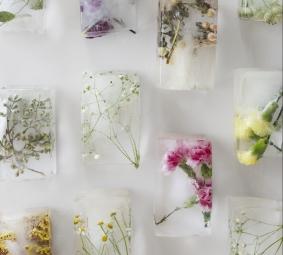 6 edible spring flower delights mightylinksfo