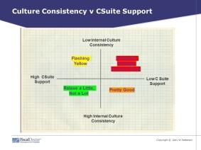Culture risk quadrants