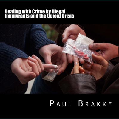 Book on Dealing with Illegal Immigration and the Opioid Crisis