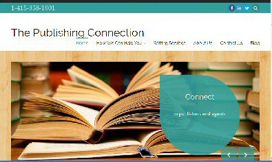 how to find the author and publisher of a website